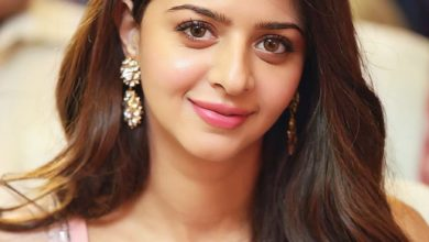 Photo of Vedika : Ruler Movie Actress vedia latest gallary