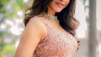 Photo of Nabha Natesh: Gallary