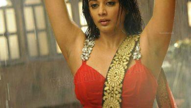 Photo of Actress :Priyamani Hot Sizzling Rain Dance Photos