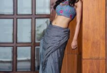Photo of Nabha Natesh latest pics in saree…