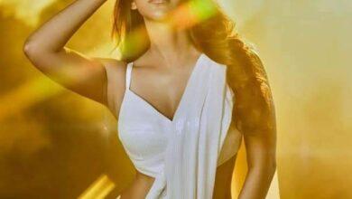 Photo of Nabha natesh latest pics